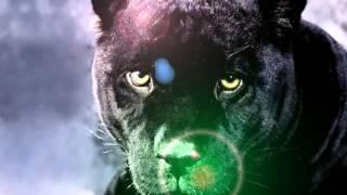 la panther noir diss black dragon, kas T, Joker, marki champinion, ken J, wu ping