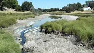 Willow Creek - Lamar, CO