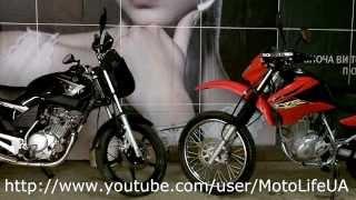 Сравнение Honda XR125L vs Yamaha YBR125