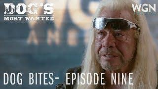 Dog's Most Wanted | Dog Bites: Episode Nine | WGN America