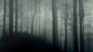 Dark Ambience - Horror Background Music 10 Hours