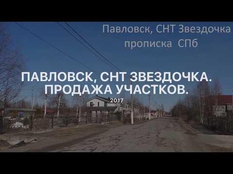 Купить земельный участок в Павловске СНТ Звездочка