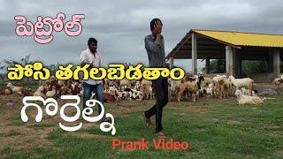 గొర్రెల కాపరి తో ఫ్రాంక్ || Village Prank 2020