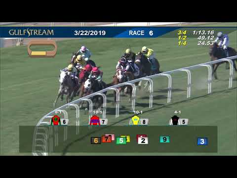 Gulfstream Park March 22, 2019 Race 6