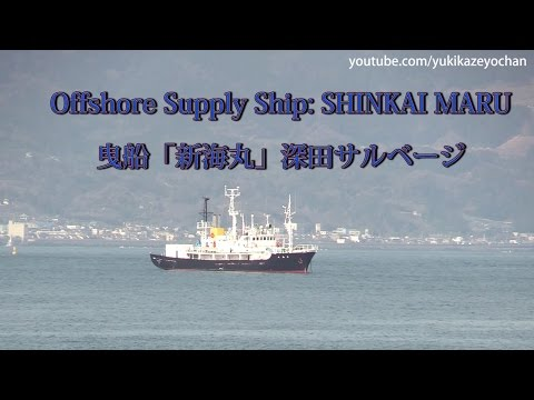 Offshore Supply Ship: SHINKAI MARU (FUKADA SALVAGE & MARINE WORKS, IMO: 7929700)