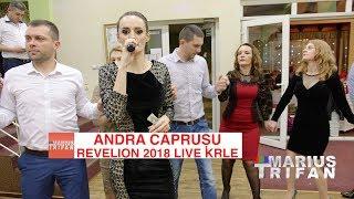 Andra Caprusu - Colaj de hore sarbe LIVE Revelion 2018 Restaurant Krle
