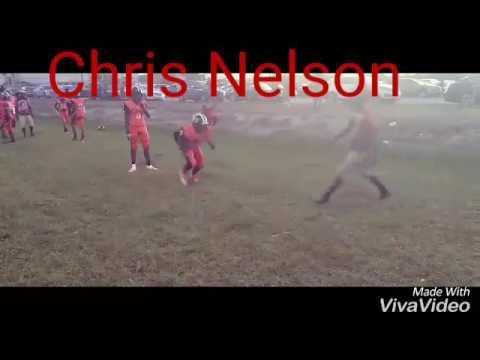 Chris Nelson football highlights