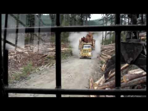 Off-highway logging trucks