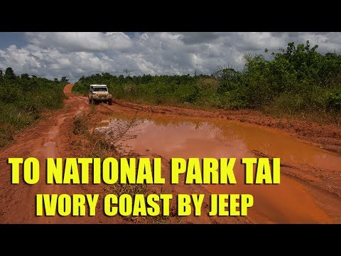 To National Park Tai - Ivory Coast by Jeep