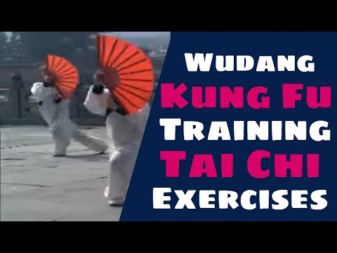 Kung Fu Training at Wudang Mountain 武當山