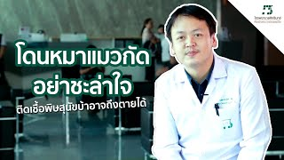 Sikarin Talks | พิษสุนัขบ้า อันตรายถึงชีวิต!!! โรคที่มีวัคซีนป้องกัน แต่ไม่มียารักษาให้หายขาด