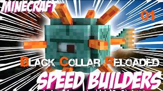 Video BCR - Minecraft Speed Builders #1 - Viel zu schnell (Pat's Sicht) download MP3, 3GP, MP4, WEBM, AVI, FLV Juli 2018