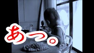【1歳の サトシ 】 お椀 ぶちまけた 決定的瞬間 thumbnail