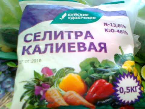 Калиевая селитра сделает ваш урожай вкуснее.