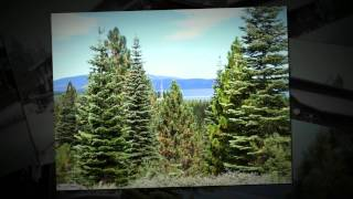 PORTOLA Real Estate MLS#201200966 Plumas County California