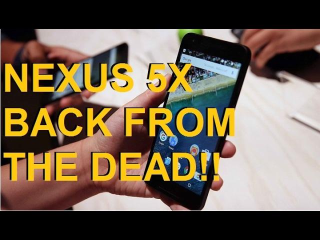 nexus 5x dead | LG Nexus 5X