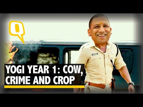 Year One Report Card of Yogi Sarkar in Uttar Pradesh