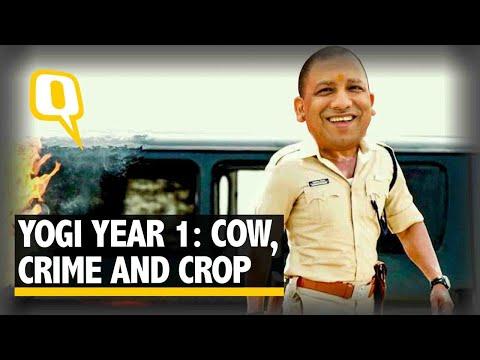 Year One Report Card of Yogi Sarkar in Uttar Pradesh