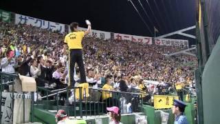 《阪神タイガース》 金本知憲ヒッティングマーチ ~ 甲子園