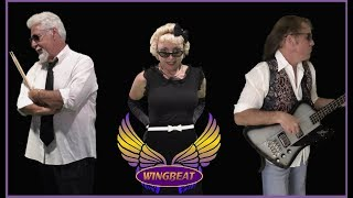 The Beat Goes On  Cover by WINGBEAT