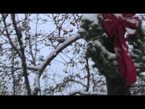 Evening Flurries Buffalo NY.mov