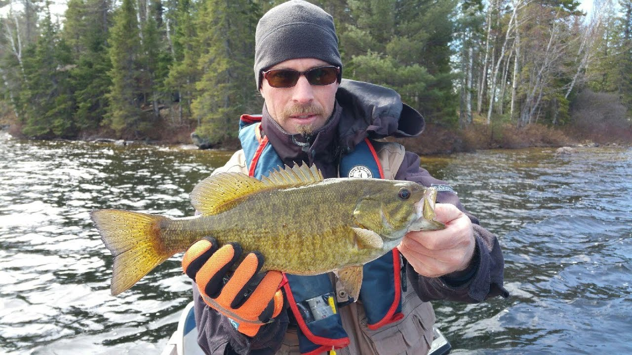 Spring northern ontario bass fishing 2017 youtube for Spring bass fishing