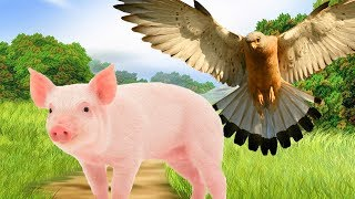 Animals Puzzle For Kids & Learn Animals For Children ❤ Wow Toddlers ❤ Learn Name and Sound Animals