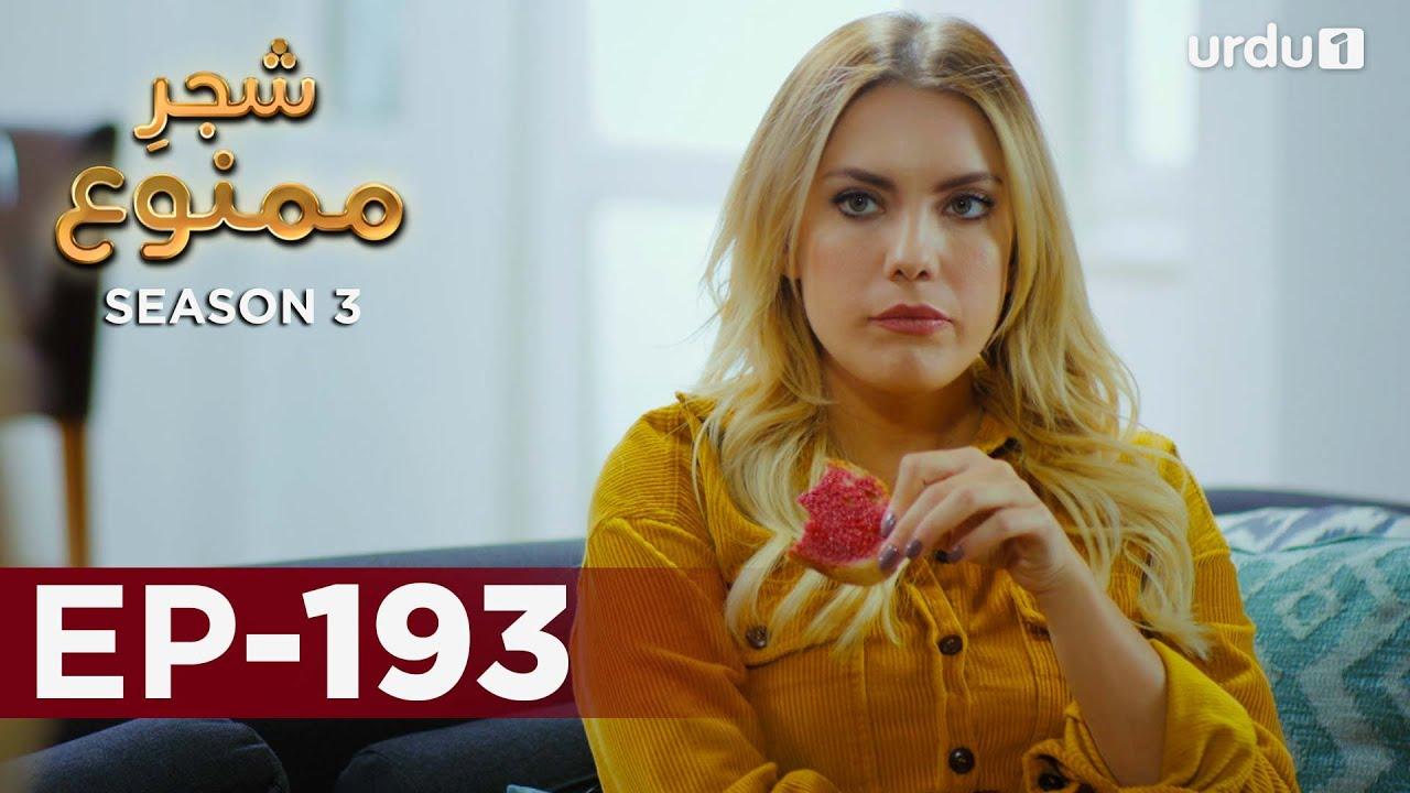 Download Shajar-e-Mamnu   Episode 193   Turkish Drama    Forbidden Fruit   Urdu Dubbing   6 September 2021