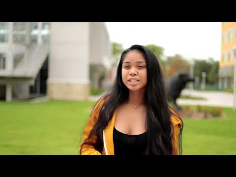 Why USF - Part 1   University Of South Florida