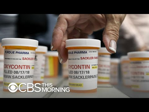 Purdue Pharma, accused of fueling opioid crisis, reportedly wanted to capitalize on treatment