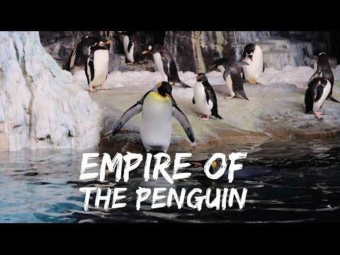 Antarctica Empire Of The Penguin - Sea World Orlando - Full Ride - HD
