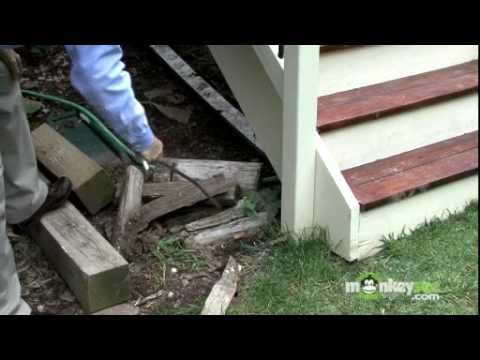 Termite Detection and Prevention Tips