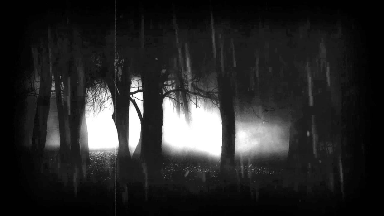 Wallpaper Hd Skeleton Floresta Do Medo Youtube
