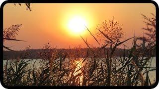 Mit dem Ton der Natur klingen - Ralf Gehlert