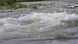 Archiwum strumieni - 6 października 2021 (15:10)