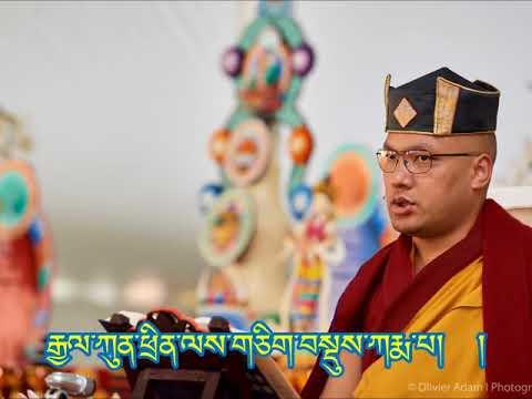 Happy Birthday to His Holiness the 17th Gyalwang Karmapa Ogyen Trinley Dorje