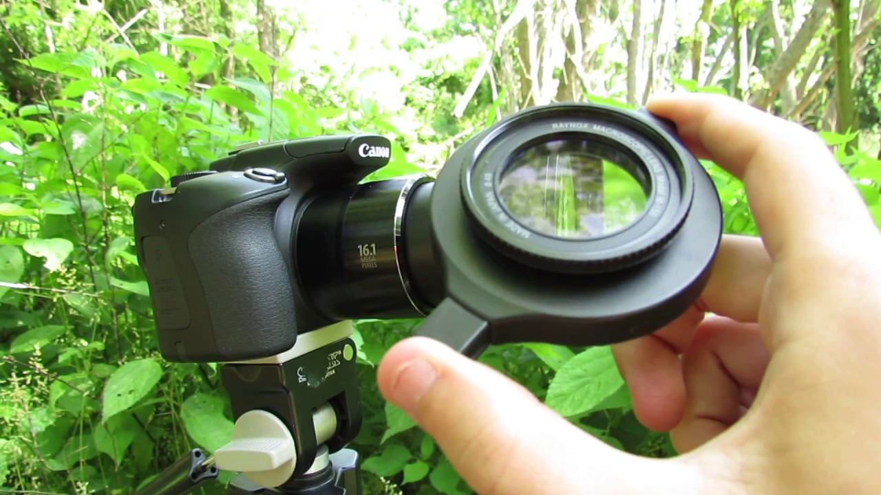 Buy canon powershot sx60 hs digital camera featuring 16. 1mp high sensitivity cmos sensor, digic 6 image processor 65x optical zoom lens. Review.