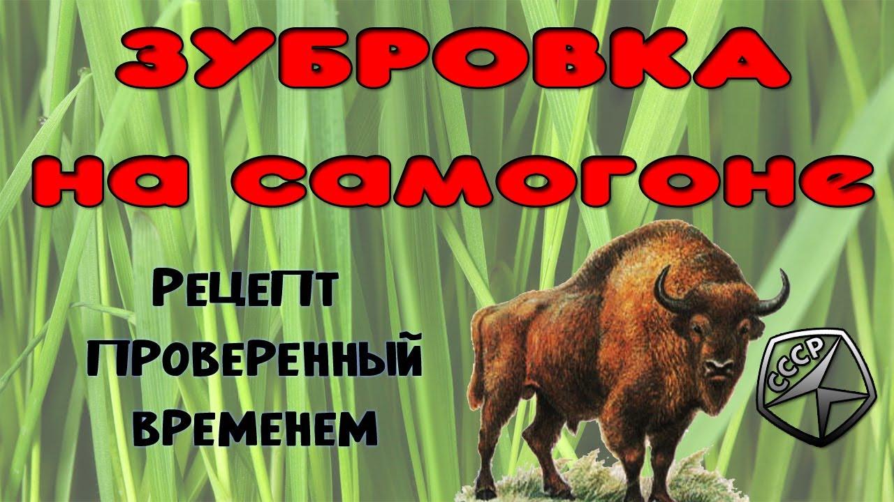 Зубровка, лучший напиток СССР. Рецепт зубровки на самогоне проверенный временем.