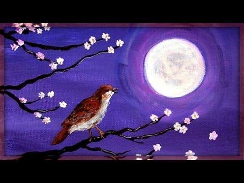 Sound Therapy Night Birds Youtube