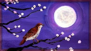 ~ Sound Therapy -  Night Birds ~