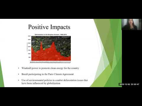 Final Presentation on Brazil's Environment and Globalization