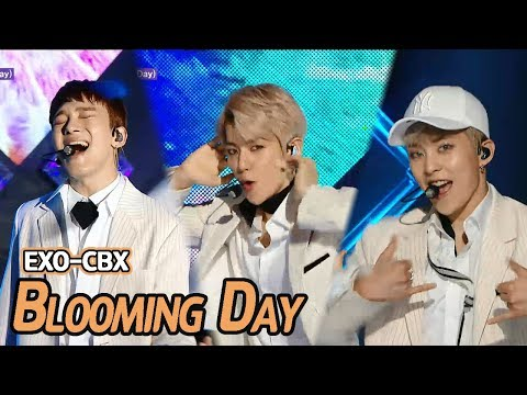 [Comeback Stage] EXO-CBX - Blooming Day, 엑소-첸백시 - 花요일 Show Music core 20180414