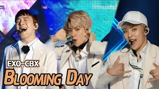 Download Video [Comeback Stage] EXO-CBX - Blooming Day, 엑소-첸백시 - 花요일 Show Music core 20180414 MP3 3GP MP4