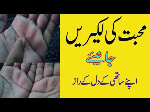 Palm line on Your Hand  In Urdu || Palmistry by Natural health Tips