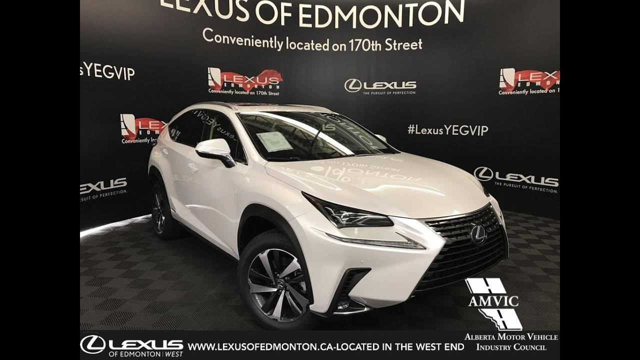 Lexus Nx Hybrid >> 2019 Lexus Nx 300h Hybrid Review