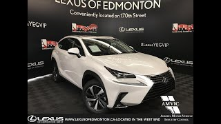 2019 Lexus NX 300h Hybrid Executive Package Review