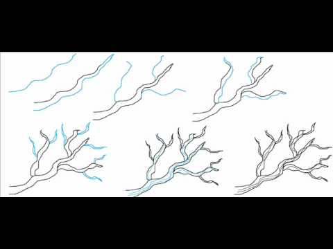 How To Draw A Tree Branch