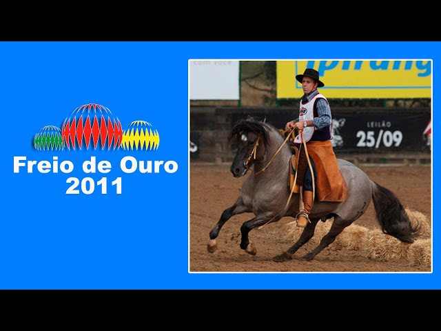 NOSTALGIA FREIO DE OURO 2011