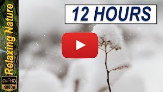 12 hours of Beautiful snowy scene and relaxing music - HD 1080p Winter land & peace of mind