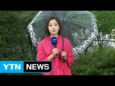 [날씨] 오늘 '처서', 중부지방 비...서울 200mm↑ / YTN